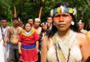 Mulher indígena ganha prêmio ambiental Goldman por proteger 500.000 hectares da floresta amazônica