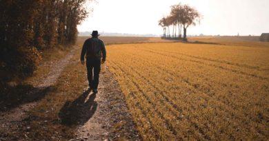Seu objetivo é caminhar 10.000 passos? A ciência mostra que precisamos de menos